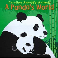 A Pandas's World cover